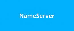 تنظیم name server در websitepanel