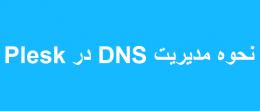 نحوه مدیریت DNS در پلسک