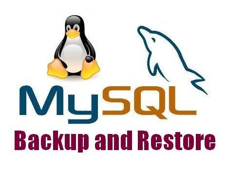ریستور فایل های بزرگ MySQL در SSH لینوکس