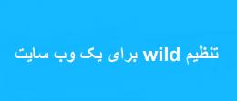 تنظیم wild برای یک وب سایت