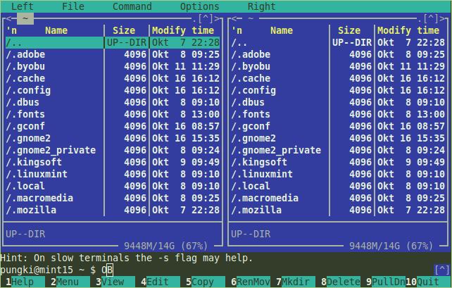 نصب mc روی لینوکس